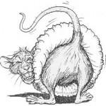 rats-ass