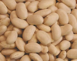 i-beans-grnorth