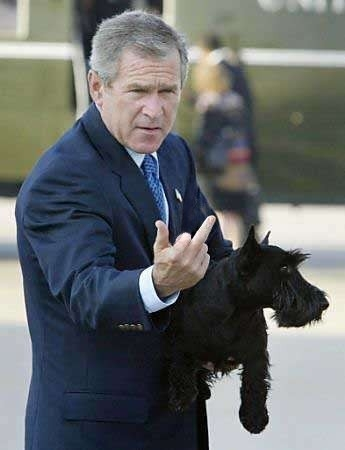 bush-finger 2.jpg